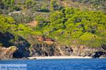 De groene oostkust van Skopelos   Sporaden   De Griekse Gids foto 9 - Foto van De Griekse Gids