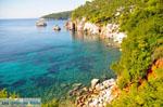 Stafylos | Skopelos Sporaden | De Griekse Gids foto 2 - Foto van De Griekse Gids