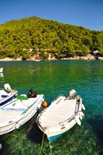 Agnontas   Skopelos Sporaden   De Griekse Gids foto 7 - Foto van De Griekse Gids