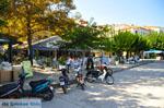 Skopelos stad | Sporaden | De Griekse Gids foto 94 - Foto van De Griekse Gids