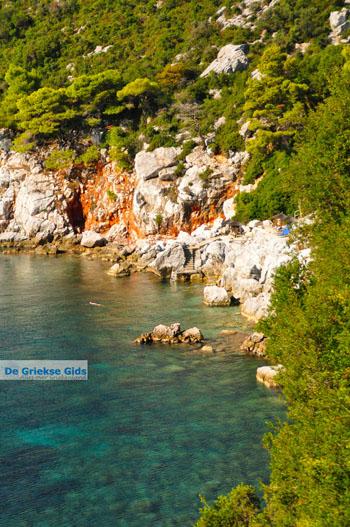 Stafylos   Skopelos Sporaden   De Griekse Gids foto 3 - Foto van De Griekse Gids
