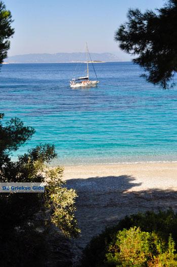 Kastani | Skopelos Sporaden | De Griekse Gids foto 2 - Foto van De Griekse Gids