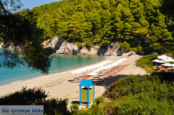 Kastani   Skopelos Sporaden   De Griekse Gids foto 4 - Foto van De Griekse Gids
