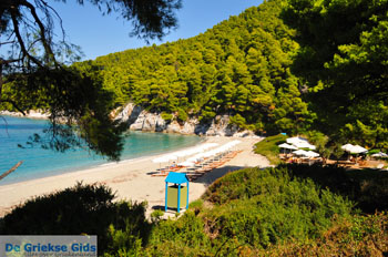 Kastani | Skopelos Sporaden | De Griekse Gids foto 6 - Foto van De Griekse Gids