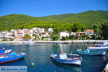 Klima-Elios en Hovolo | Skopelos Sporaden | De Griekse Gids foto 4 - Foto van De Griekse Gids